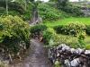Alte Wege und Steinmauern in Cuada
