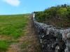 Wanderung an oder auf der Mauer
