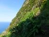 Neue Treppenstufen im Steilhang