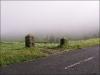 São Miguel - Hochland im Nebel