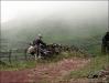 Terceira - Esel und Reiter