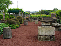 Weinmuseum in Biscoitos