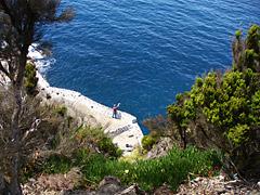 Terceira - Miradouro da Ponta da Serreta