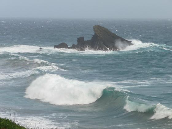 Wellen vor Carapacho