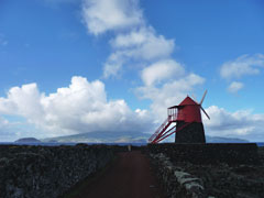 Windmühle im Weinbaugebiet Criação Velha
