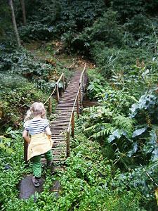 Wanderung Faial da Terra - Brücke